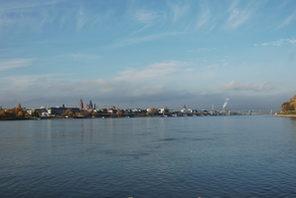 Mainz von Gustavsburg aus gesehen. © Inge Miczka